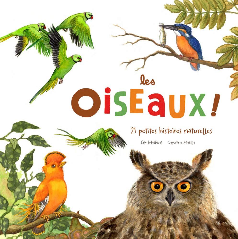 """<p style=""""text-align: center;"""">LES OISEAUX</p><p style=""""text-align: center;"""">鳥類</p>"""